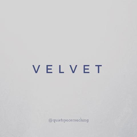 Velvet virtual coaching